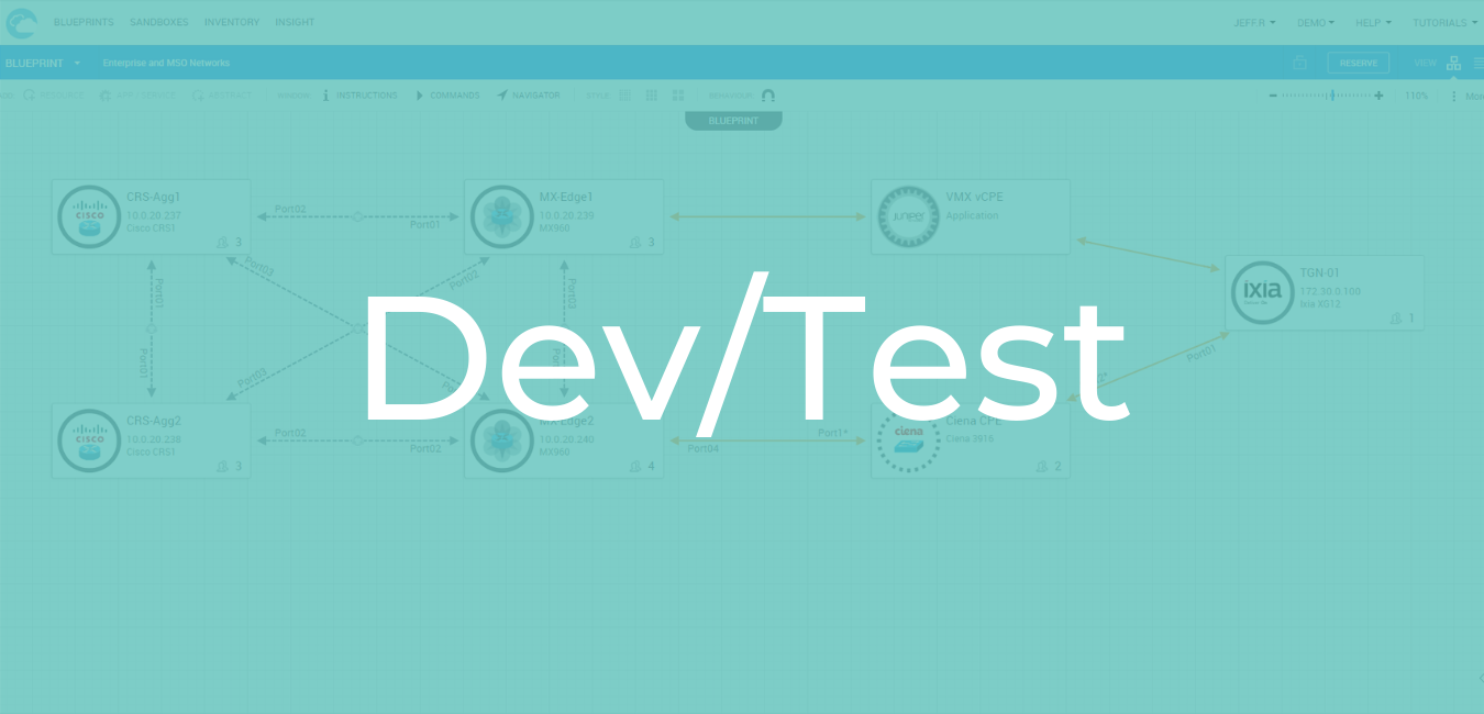 Dev Test screen overlay