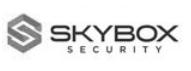 Skybox grey logo